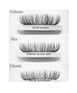 eyelash info -website
